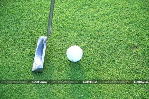 Bentgrass_is_a_type_of_turfgrass_used_on_some_golf_courses_TheGolfHouse